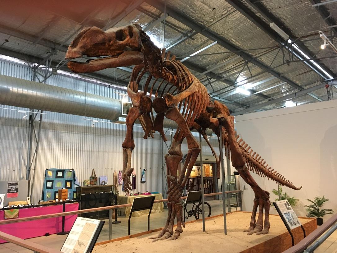 Full skeletal replica of Muttaburrasaurus Dinosaur